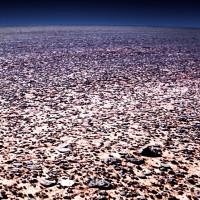 Steinwüste in der Sahara